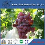 UV Landwirtschafts-nicht gesponnenes Gewebe Pspun-Verpfänden