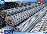 Barra d'acciaio deforme Reforced di alta qualità per il soffitto della costruzione (SSW-dB-001)