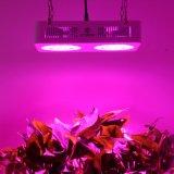 Leiden kweken Lichte Fabrikant 126W kweken Verlichting voor Grenhouse en Tent