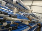 Progressive Kammer-Pumpen-einzelne Schrauben-Pumpe Glb600-18