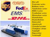 Hormona de esteroides androgénica anabólica de Epiandrosterone Epi CAS 481-29-8