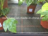 Esteira tecida PP tratada UV de Weed da fábrica de China