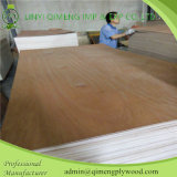 Профессионально Supply 1.6mm Bintangor Plywood с Cheapest Price