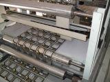 Stampatrice di incisione dei sacchetti di plastica