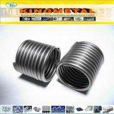Tubo della bobina dello scambiatore di calore dell'acciaio inossidabile del commestibile 301/304
