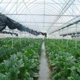 Парник пленки горячей пяди сбывания Multi аграрный для земледелия