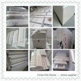 Mattonelle bianche della parete di Moca Crema del calcare del granito/marmo/quarzo