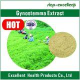 Polvo natural del extracto de la planta de Gynostemma