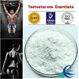 Hohes Puritytestosterone Enanthate Steroid-Puder mit Gebäude-Muskel-Lieferanten