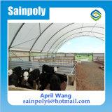 Película plástica da estufa do baixo custo para agricultural
