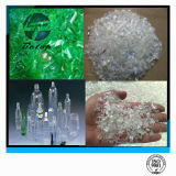 Escamas del animal doméstico y botellas plásticas inútiles recicladas del animal doméstico