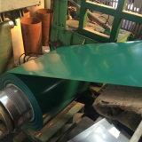 Bobina d'acciaio pre verniciata del materiale da costruzione di qualità