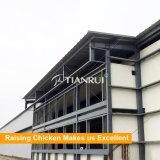 Vorfabriziertstahlkonstruktion-Huhn-landwirtschaftliches Gebäude