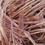 Sucata 99.99% do fio de cobre em China