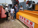 Grue supplémentaire d'EOT de poutre simple de qualité avec l'élévateur électrique