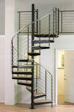 Jogo espiral de aço clássico interior da escada com o passo de madeira contínuo