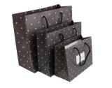 Brown Kraft imprime o saco cosmético revestido relativo à promoção da embalagem da jóia do portador de papel de arte da mão de papel do presente da compra com corda de nylon do algodão (a70)