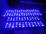 Alto potere dell'acqua salata per la lampada di illuminazione dell'acquario della barriera corallina 120cm LED