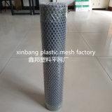 Plastic Netto van de Draad van het Netwerk Plastic Vlakke