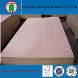 madera contrachapada del anuncio publicitario del grado de los muebles de 2-18m m