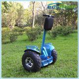 Самокат тележки гольфа колеса Ecorider 2 электрический электрический с батареей лития 2 72V Samsung над 65km