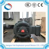 Y3 de Motor van het Lage Voltage van de Zware industrie
