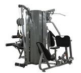 Equipo de la gimnasia - amaestrador de múltiples funciones (V8-500)