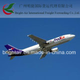 El mejor Freight Forwarder From China a Italia