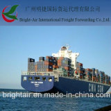 Mar Shipping Container Freight From China a Londres BRITÁNICO