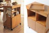 Estilo moderno de armário de madeira maciça (M-X2071)