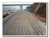 Poliestere Geogrid 50kn-60kn Factory Manufacturer