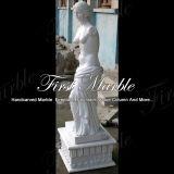Marmeren Standbeeld Mej.-147 van Carrara van het Standbeeld van het Graniet van de Steen Wit