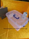 Muffa di plastica per il contenitore di memoria