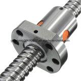 Dfu4006 Dfu4008 활주는 기계 인쇄를 위한 크롬 강철 공 나사를 가로장으로 막는다