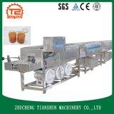 Электрический инструмент чистки и промышленное моющее машинаа для шайбы бутылки