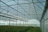 野菜温室のための反あられの網