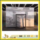 浴室の背景のデザイン及び床タイルのためのVemontの高い磨かれた灰色の大理石
