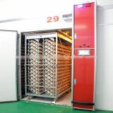Incubateur d'oeufs de qualité