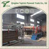 Precio bajo de la alta calidad de la madera contrachapada del grado de los muebles