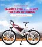 電気マウンテンバイクのための中国電池のパック