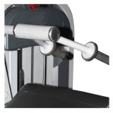 لياقة [إقويبمنت/] [تريسبس] إمتداد /Gym آلة