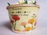 민들레 황색 꽃 고품질 및 실제적인 인쇄