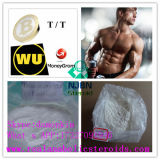 Testosterona Isocaproate del CAS 15262-86-9 para el Bodybuilding