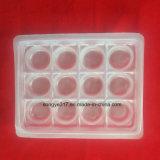 Frucht-Blasen-Tellersegment