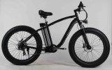 E-Bicicleta de la suciedad de la montaña del alto rendimiento con 750W