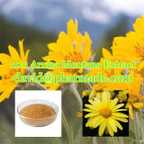 10 : 1 poudre d'extrait de Montana d'arnica