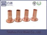 10-10 Rebite de aço tubular cheio de cabeça plana chapeada de cobre
