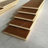 Plancher conçu par bouleau en bois composé de plancher