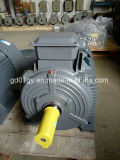 100% Bobina De Enrolamento De Arame Ferro Elétrico 3 Fase Assíncrona Motor Elétrico