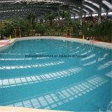 Самое лучшее здание плавательного бассеина стальной структуры конструкции крытое для сбывания